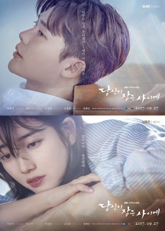 Review Drama While You Were Sleeping (2017)